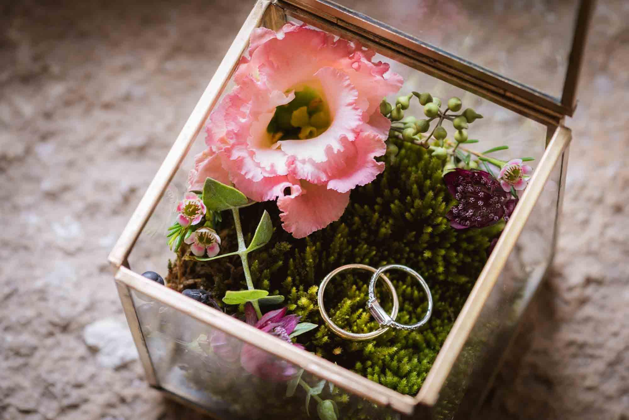 Fleurs locales en alsace